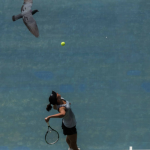 distracted tennis player