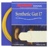 ASHAWAY Synthetic Gut 17g Strings Yellow