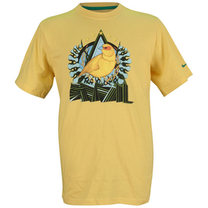 NIKE BOYS CBF TEAM TD SOCCER TEE VARS MAIZE
