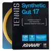 ASHAWAY Synthetic Gut 17G Tennis String Gold