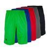 UNDER ARMOUR Men`s UA Raid Short