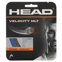 Velocity MLT Tennis String BLUE