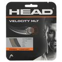 Velocity MLT Tennis String NATURAL