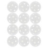 Indoor Pickleballs 12 Pack 0019_WHITE