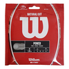 WILSON Natural Gut Tennis String