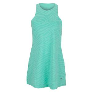 Women`s Queen Skater Tennis Dress Mint Zebra Print